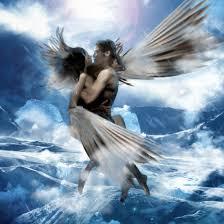 his wings 1